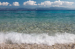 wave on the shore.jpg
