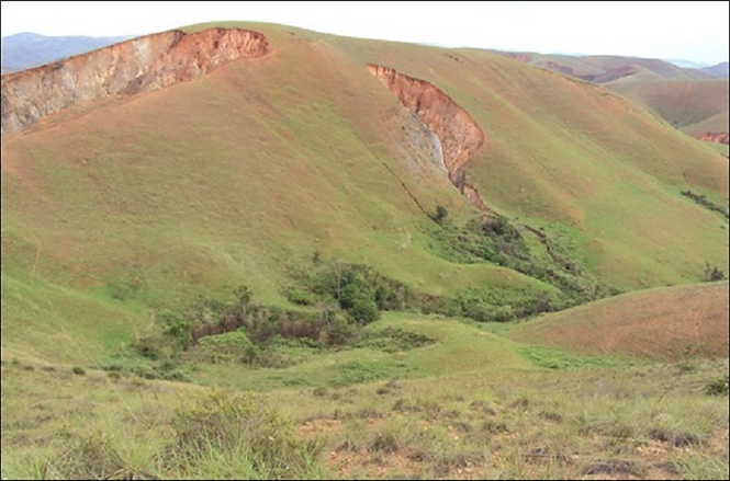 versants Madagascar hautes terres centrale. Lieu de récolte du bois