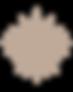 Macromascar_logo_picto_4x.png