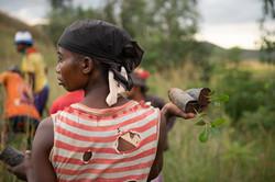 Projet de reforestation avec l'Association Doria à Andranaotra
