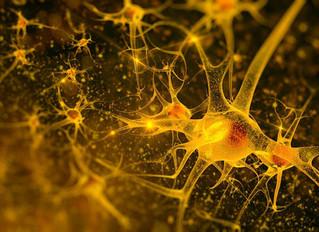 6 Big Mysteries of Alzheimer's Disease