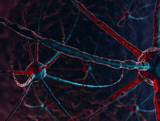 Alzheimer's Disease Might Start in Our Bodies