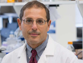 High-fat diet in utero protects against Alzheimer's later