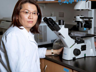 Stony Brook team has breakthrough in 'triple-negative' breast cancer research