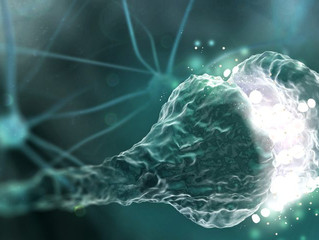 Saving Brain Connections by Targeting Synaptic Proteins May Treat Alzheimer's, Study Finds