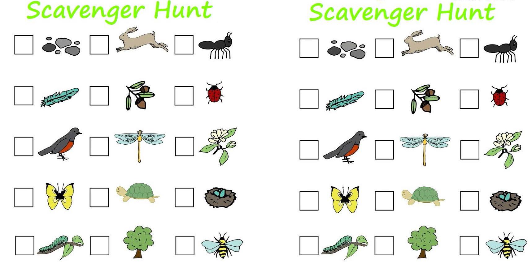 Download the Sibley Nature Center Scavenger Hunt