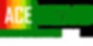 ACE Wizard Logo