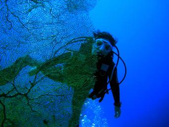 La donna e le immersioni subacquee