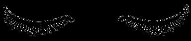lashes-icon-isolated-on-white-background