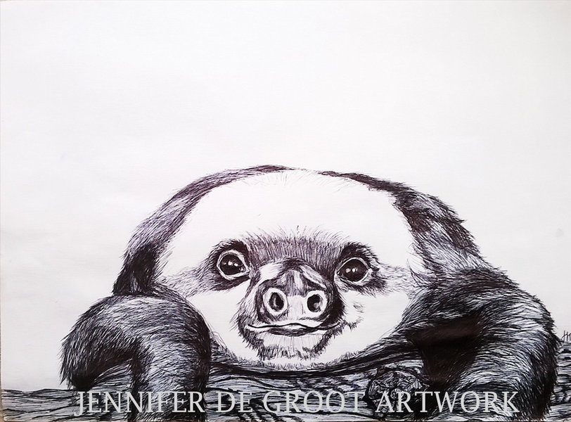 Baby Sloth - Sold