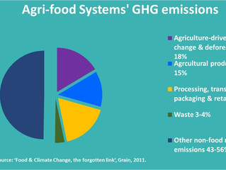 What do Food Systems Contribute to Climate Change?