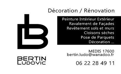 Ludovic BERTIN VERSO.jpg