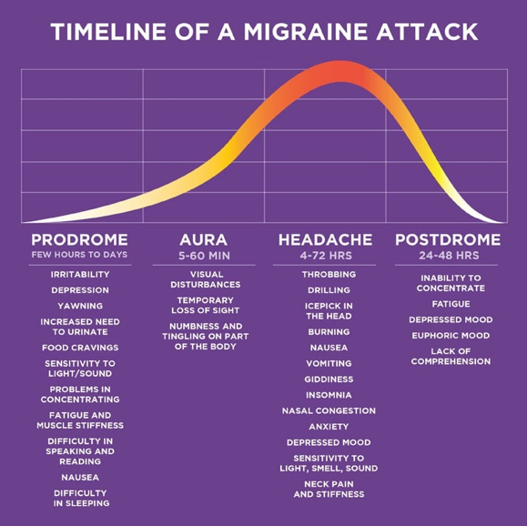 The timeline of a migraine headache attack as illustrated by a bell curve. How can a chiropractor affect this debilitating condition?