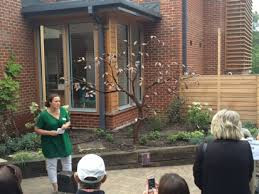 Greewich and Bexley Hospice Memory Tree