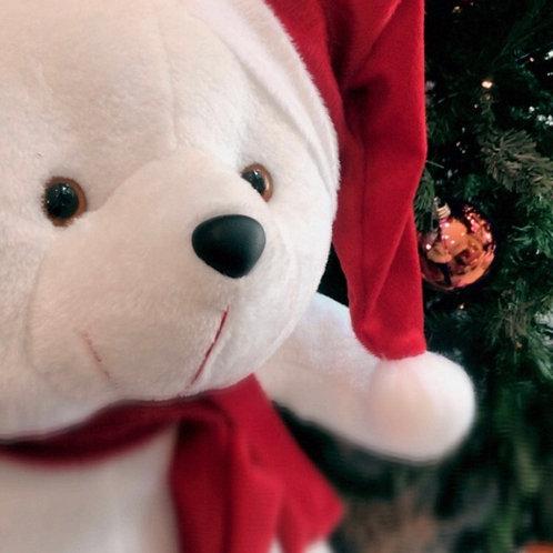 Noah Urso de Natal