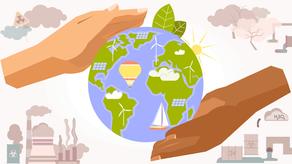 Building an Ecological Environment