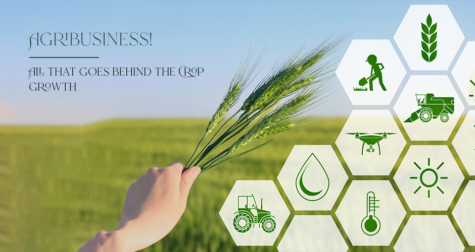 Ramesh Chaurasia Updates - Agri-Business