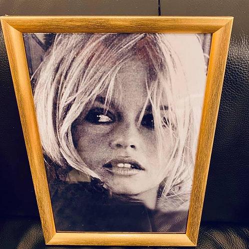 kader Bardot