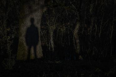 forest-ghost-shadow_edited.jpg