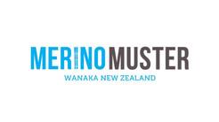 Merino Muster