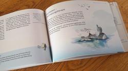 APL Patienten Broschüre
