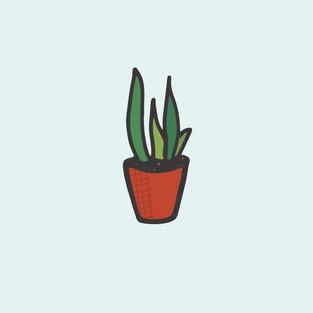 planty-01.jpg