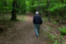 The Stroll.jpg