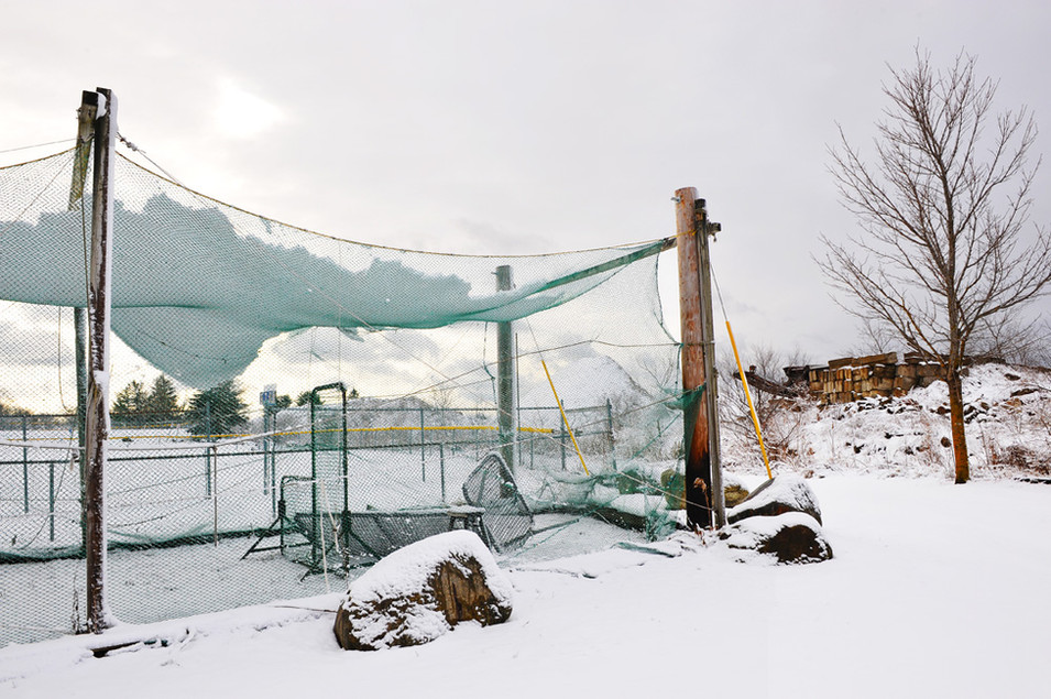 Ball Park in the Snow
