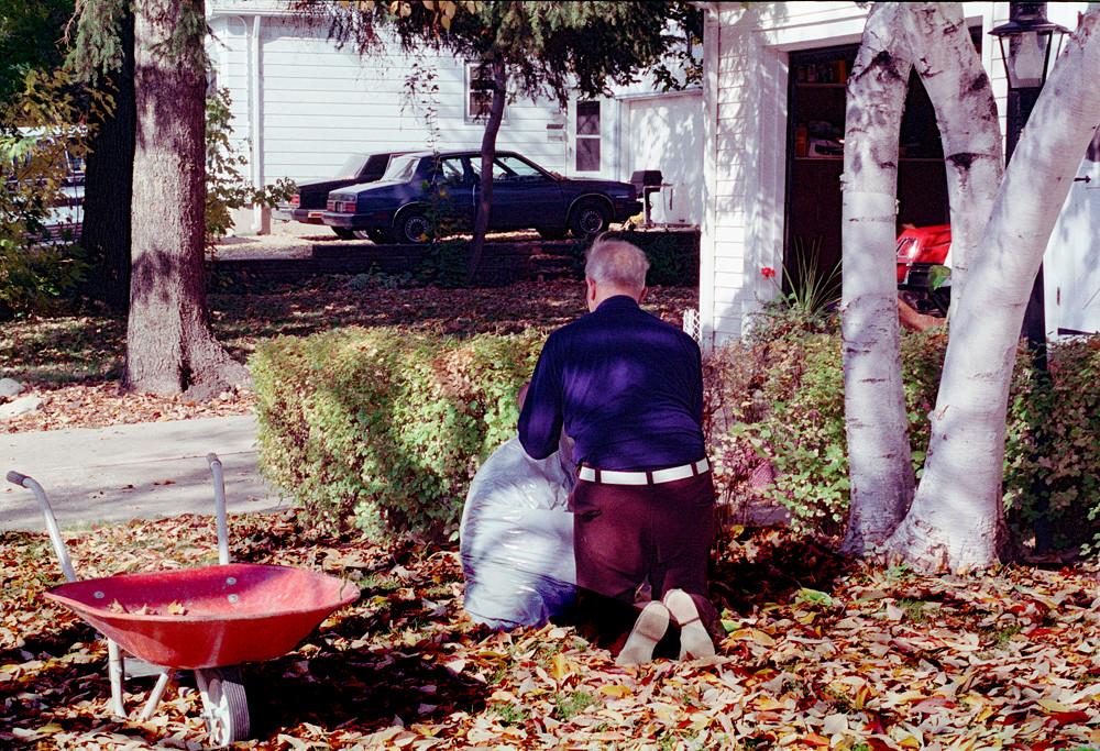 Kneeling in the Leaves © 1985