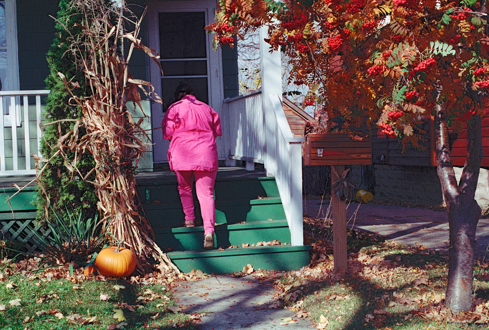 Pink Lady © 1985