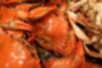 seafood-1013026_1920.jpg