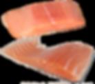 fish-2631412_1920.png