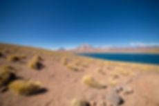 Lagunas Altiplánicas, Atacama