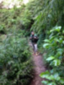 Levada Queimadas, Madeira