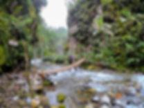 Catarata Rio Agrio. Costa Rica