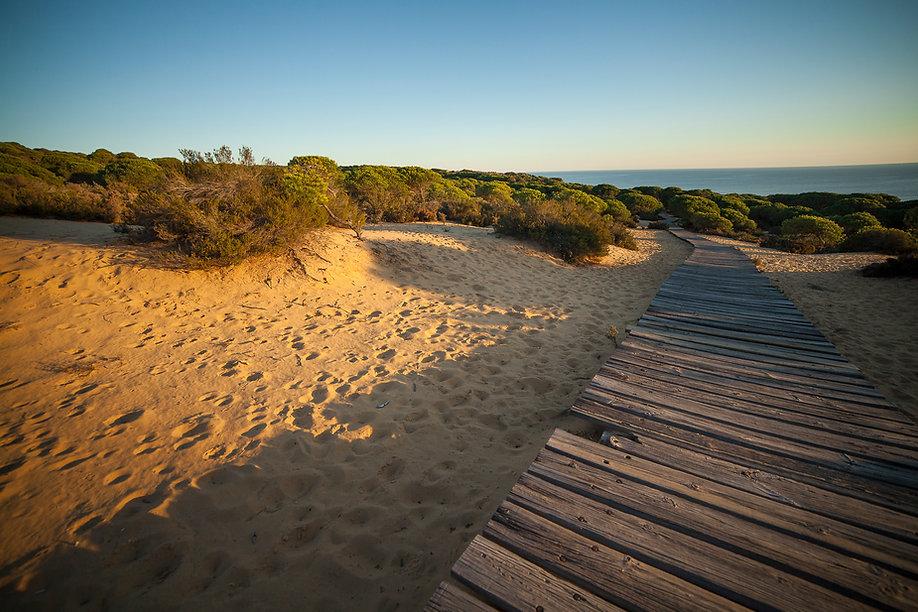 Doñana, Huelva