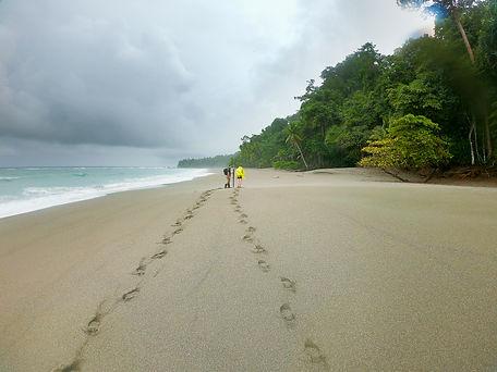 Parque Nacional de Corcovado. Descubre Sin Limites