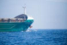 Avistamiento de delfines, Tarifa