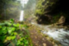 Catarata Rio Agrio. Descubre Sin Limites 2.jpg