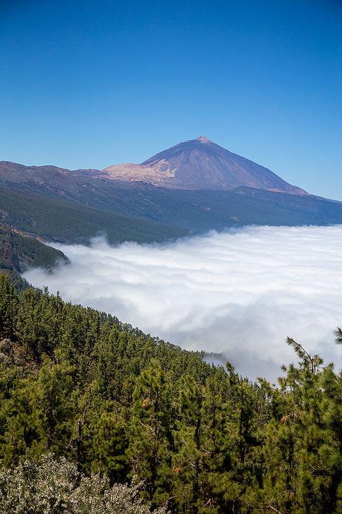 Volcán Teide, Descubre Sin Limtes