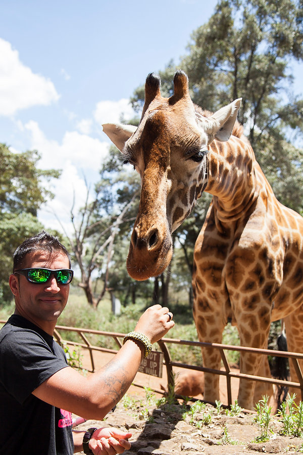 Giraffe Centre, Naiorobi, Kenia