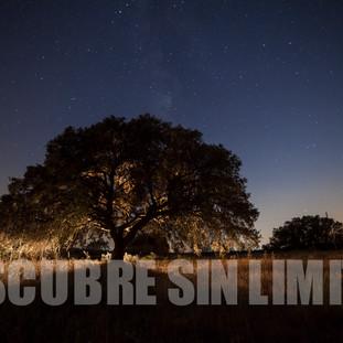 Nocturna en campos de Castilla