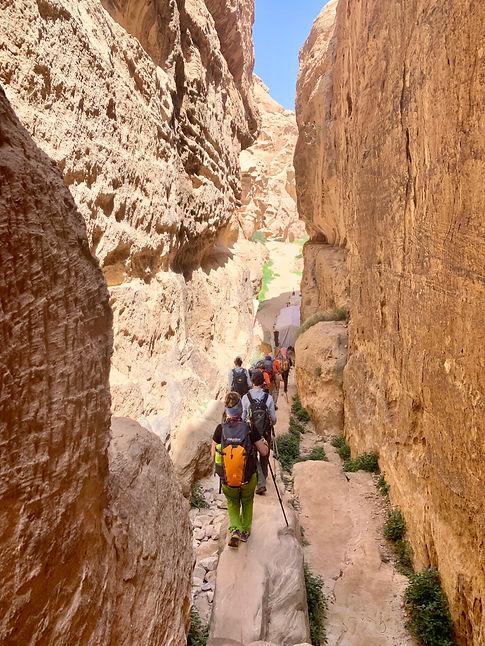 Little Petra. Descubre Sin Limites