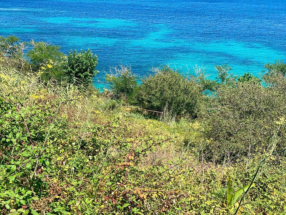 Isla de Ons, Descubre Sin Limites