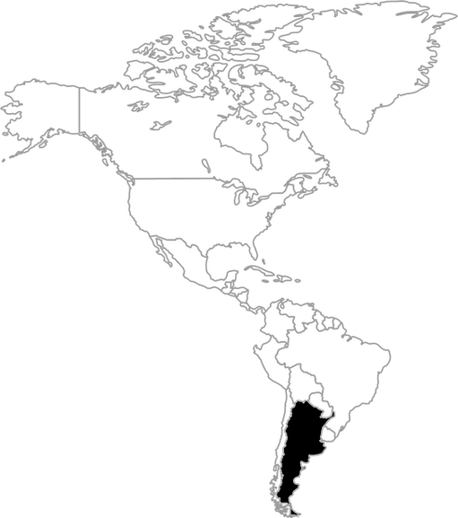 Mapa America Argentina abril 2020.png
