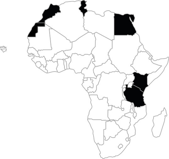 Mapa Africa Agosto 2020.png