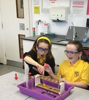Science at Westcliff High School for Girls
