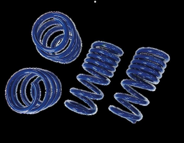 Fahrwerkstieferlegung für Mustang GT V8/Ecoboost/Coupe/Convertible