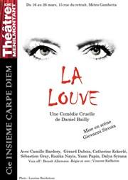 La Louve de Daniel Bailly / Assistante à la mise en scène / 2011