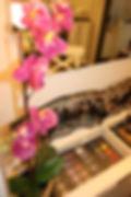 קורס איפור-אור לעור-סוזי נחמן.jpg.JPG